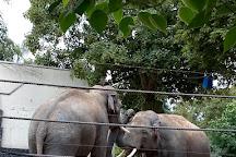 Zoo de Maubeuge, Maubeuge, France