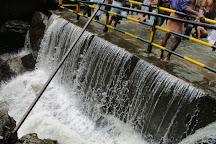 Suruli Falls, Theni, India