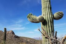 Linda Vista Trail, Tucson, United States