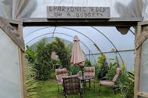 Tanglewood Wild Garden, Penzance, United Kingdom