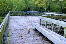Tickfaw State Park, Springfield, United States