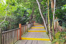Changi Beach Boardwalk, Singapore, Singapore