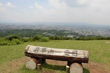 Mt. Wakakusa, Nara, Japan