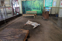 Zoobic Safari, Subic Bay Freeport Zone, Philippines