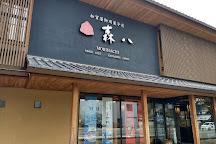 Kanazawa Kashi Kigata Art Museum, Kanazawa, Japan