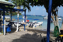 Coral Point Diving, Bayahibe, Dominican Republic