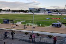 Shelbourne Park Greyhound Stadium, Dublin, Ireland