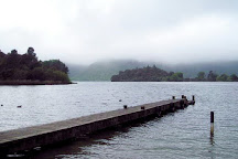 Lake Okareka Walkway, Rotorua, New Zealand
