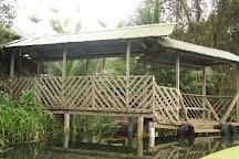Aamvecona, Changuinola, Panama