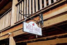 Wild Hare Hard Cider, Bluemont, United States