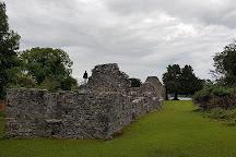 Innisfallen Island, Killarney, Ireland
