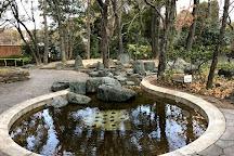 Nagai Botanical Garden, Osaka, Japan
