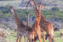 Africa Unike Adventures & Safaris, Nairobi, Kenya