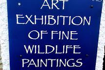 The Fitzwilliam Gallery, Hawkshead, United Kingdom
