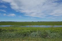 Swan Lake National Wildlife Refuge, Sumner, United States