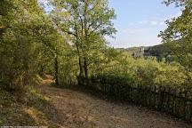 Abri du Poisson, Les Eyzies-de-Tayac-Sireuil, France