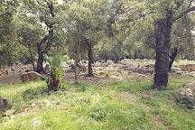 Poblado talaiotico de Ses Paisses, Arta, Spain