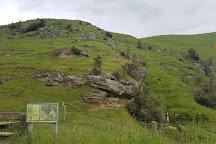 Clifden Caves, Eastern Bush, New Zealand
