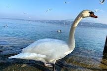 Bains des Paquis, Geneva, Switzerland