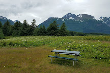 Chilkat State Park, Haines, United States