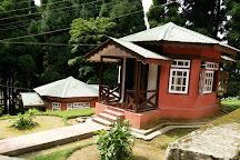 Neora Valley National Park, Darjeeling, India