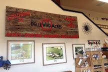 BelleWood Acres, Lynden, United States