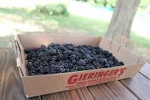 Gieringer's Family Orchard & Berry Farm, Edgerton, United States