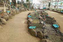Izu Shaboten Zoo, Ito, Japan