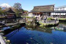 Oshino Hakkai, Oshino-mura, Japan