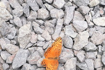 Butterfly Haven, El Valle de Anton, Panama