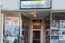 Iron Horse Music Hall, Northampton, United States