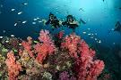 Trang Scuba Diving