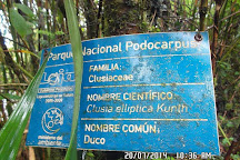 Parque Nacional Podocarpus, Loja, Ecuador