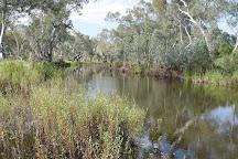 Owen Springs Reserve, Alice Springs, Australia