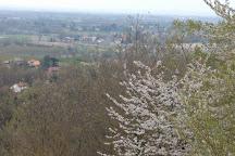 Parco Naturale di Rocchetta Tanaro, Rocchetta Tanaro, Italy