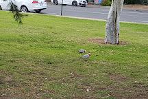 Princess Elizabeth Playground, Adelaide, Australia