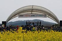 Jeju Horse Park, Seogwipo, South Korea