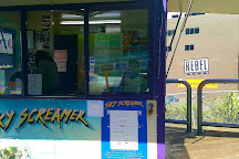 Sky Screamer Reverse Bungy, Auckland, New Zealand