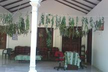 Thrimal Ayurvedic Treatment Center, Habarana, Sri Lanka