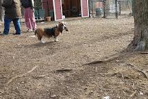 Ogunquit Dog Park, Ogunquit, United States