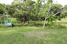 Le Jardin D'Eau, Goyave, Guadeloupe