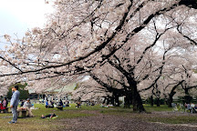 Tokyo Metropolitan Koganei Park, Koganei, Japan