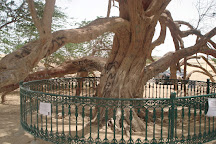 Tree Of Life, Manama, Bahrain