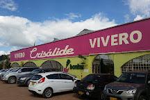Vivero Crisalide, Chia, Colombia