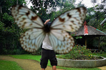 Simply Butterflies Conservation Center, Bilar, Philippines