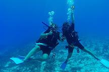 Pro Dive Mexico, Playa del Carmen, Mexico