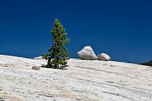 Pothole Dome, Yosemite National Park, United States