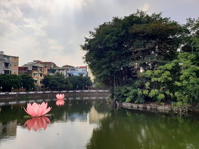 Hồ Văn