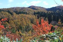Okayama Forest Park, Kagamino-cho, Japan
