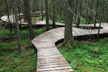 Trysil Bike Arena, Trysil Municipality, Norway